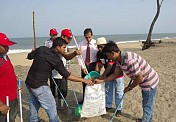 India Inc joins Clean India campaign