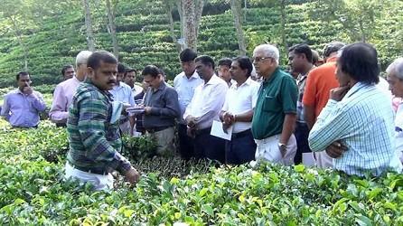 TTRA Workshop on better Tea Production at Manu Valley.TIWN Pic Nov 26