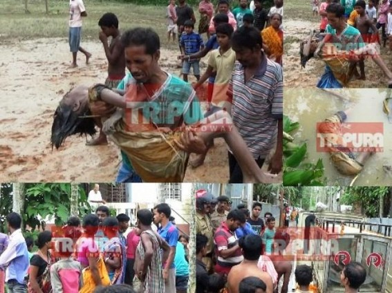 Flood toll rises to 3 in Tripura : 11-year-old missing girl's dead body found floating in river Howrah without any rescue operation since 48 hrs