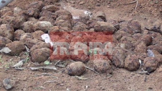 Twin Grenade blast caused losses to 11 families at Kailashahar
