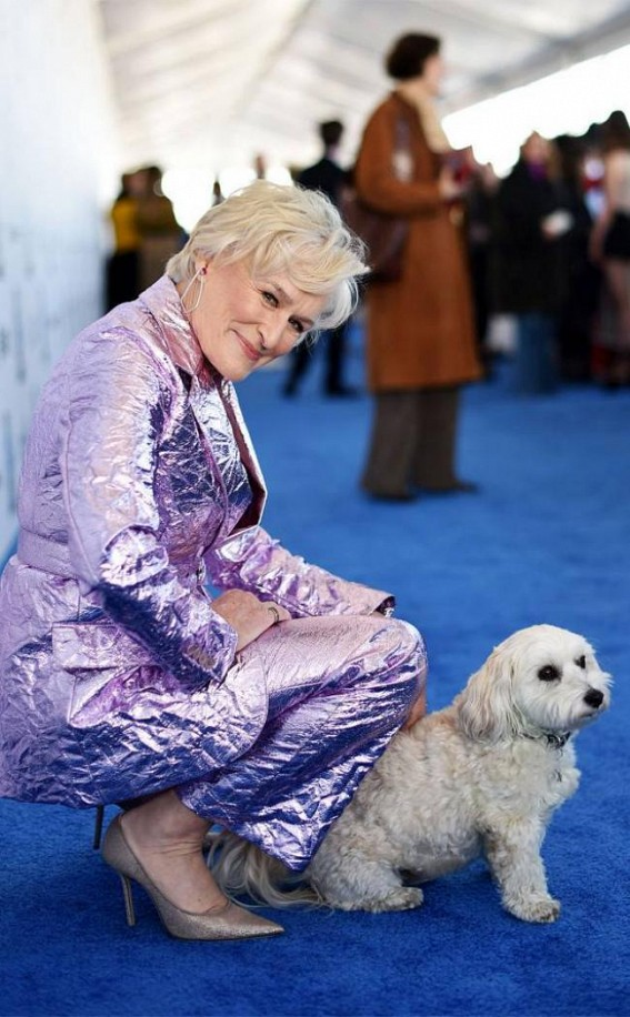 Glenn Close's dog steals the show during award ceremony