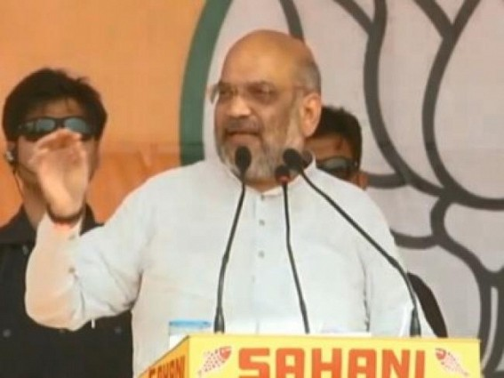 Amit Shah says 'terrorists like Zakir Naik' hoping for Congress victory so that 'they can return to India'
