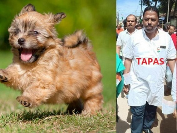 BJP MLA calls BJP leader 'puppy' before media, warns to beat him with shoes