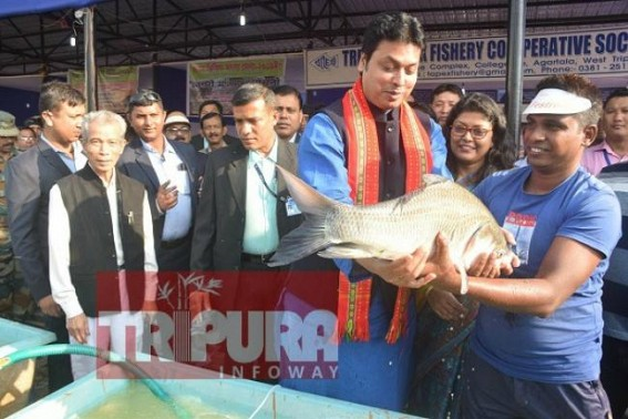 State level Fish Festival begins, CM opts for Rs. 700 crores  per year crores from pisciculture