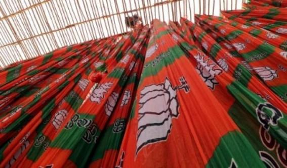 BJP's Delhi post-mortem: Aim for 50% vote share, forget Cong