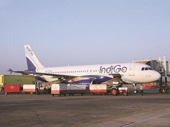 PIL in HC to ground all A320 Neos with faulty engines