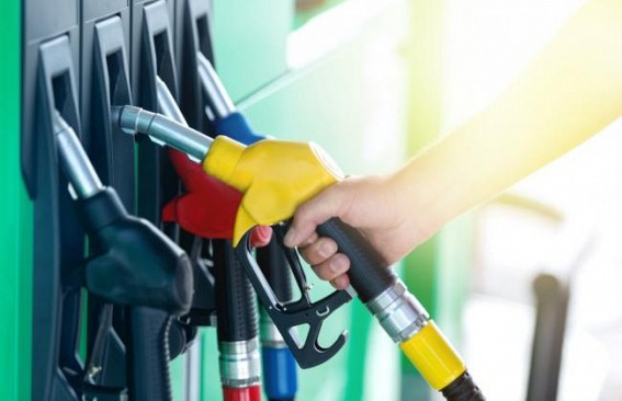 Bring petroleum, real restate under GST, urges Assocham