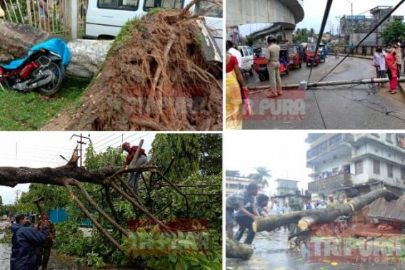 Massive damages across Tripura after rain, storms hit Northeast region, CM orders restoration of cut services by 3 days : Power disruption as electric posts collapsed