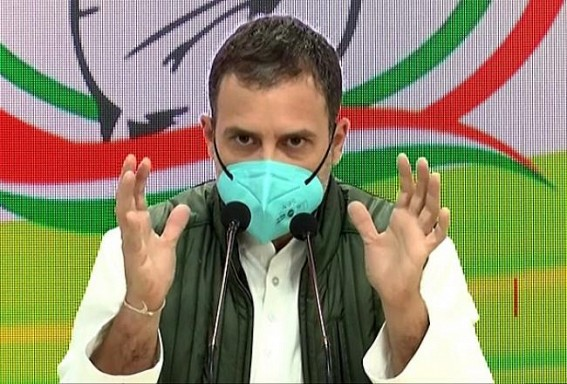 BJP has captured India's entire institutional framework: Rahul